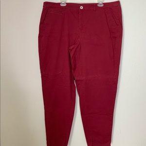 Lane Bryant Maroon Straight Cotton Pants 22